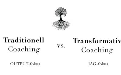 Coachens främsta verktyg (enligt en certifierad transformativ coach)